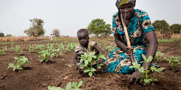 A mother and her child plant crops in a field
