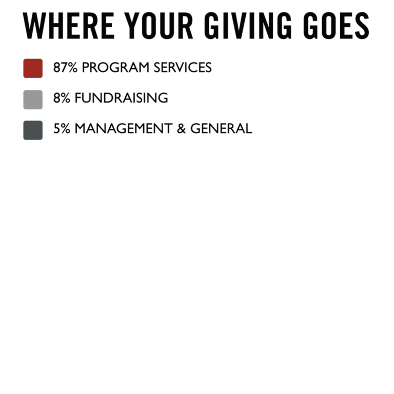 Where your giving goes bullet graphic.