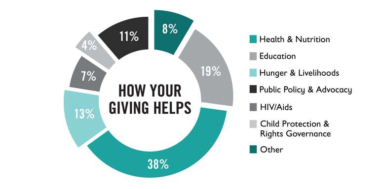 A graphic representation of how donor support helps Save the Children's programs.