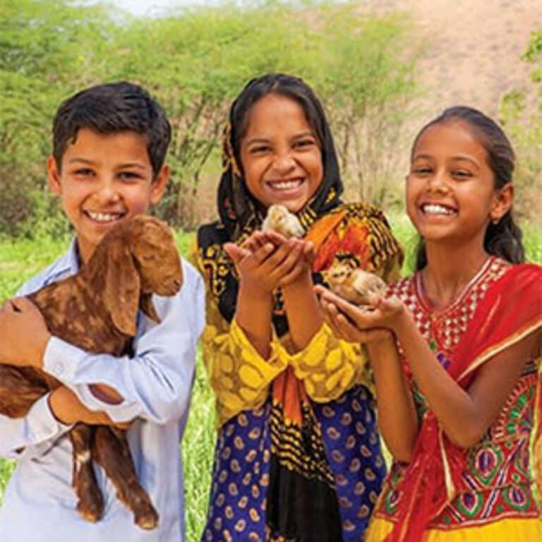 A group of children hold a goat and 2 chicks.