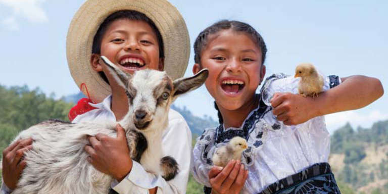A great way to donate! Chickens and goats give much-needed protein to help maintain the health of children. When additional animals arrive, so do more milk and eggs, giving families a way to earn income. Photo Credit: Save the Children 2016.