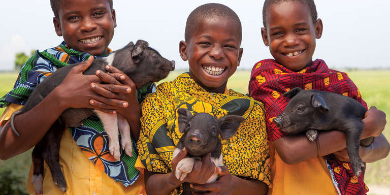 Three boys pose with piglets for Save the Children's gift catalog. Photo credit: Save the Children 2017.