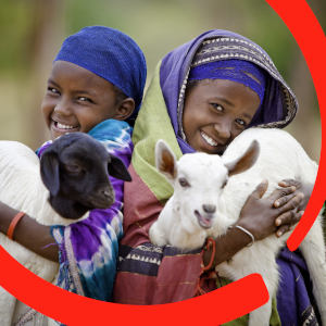 Two sisters stand next to one another in Ethiopia and hold baby animals. One sister holds a goat while the other holds a sheep. Livestock provide families with both income and nourishment, so that they can earn living while also staying well fed and healthy. Photo credit: David duChemin / Save the Children, 2009.