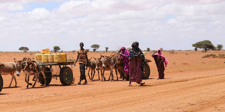 A boy and three women walk through a dry landscape with donkeys carrying yellow water jugs on carts.