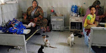 A woman and her child sit on run-down hospital beds surrounded by stray cats. Public health care systems in many countries like Egypt continue to be plagued by poor adherence to proper hygiene standards and the devastating consequences that result.