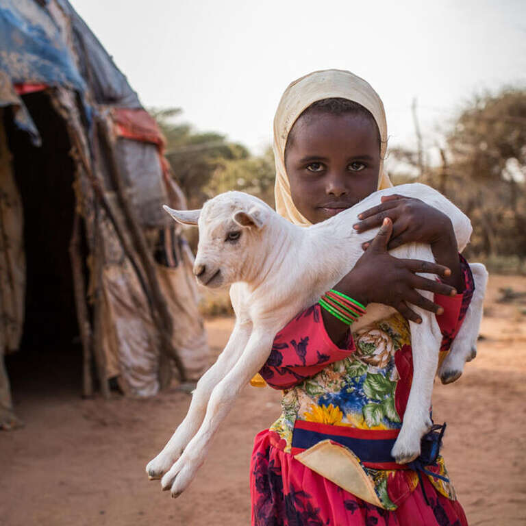 A young girl holds a baby goat.