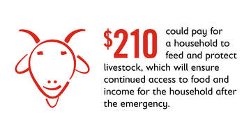Cost of feeding livestock graphic